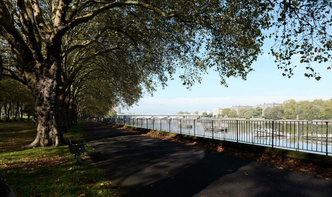 Images for Putney Bridge Road, Putney, London, SW18 1NP EAID:3928049530 BID:2